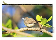 Zebra Finch Carry-all Pouch