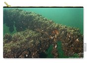 Zebra Mussels Carry-all Pouch