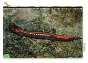 Zig-zag Salamander Carry-all Pouch