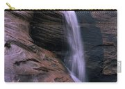 Zion Summer Waterfall Carry-all Pouch