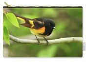 American Redstart Warbler Carry-all Pouch
