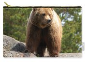 Brown Bear 4 Carry-all Pouch