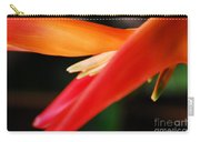Fine Art - Bird Of Paradise Carry-all Pouch