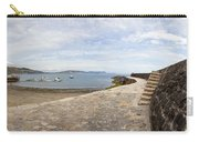Harbour Wall Lyme Bay Dorset Carry-all Pouch