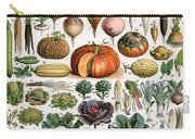 Illustration Of Vegetable Varieties Carry-all Pouch