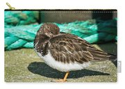 Sleepy Turnstone At Padstow Harbour Carry-all Pouch