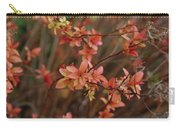 Spirea 1280 Carry-all Pouch
