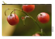 The Berries Of The Lily Of The Valley Carry-all Pouch