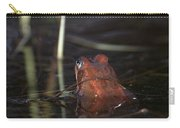 The Common Frog 2 Carry-all Pouch