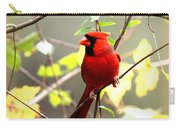 0138 - Cardinal Carry-all Pouch