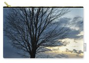 015 April Sunsets Carry-all Pouch