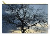 016 April Sunsets Carry-all Pouch