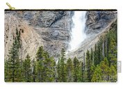 0187 Takakkaw Falls Carry-all Pouch