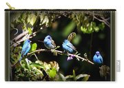 0430-005 - Indigo Bunting Carry-all Pouch