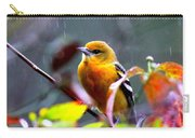 0651 - Baltimore Oriole Carry-all Pouch