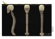 3d Rendering Of Human Vertebral Column Carry-all Pouch