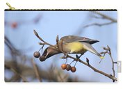 4427 - Cedar Waxwing Carry-all Pouch