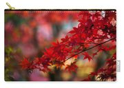 Acer Kaleidoscope Carry-all Pouch by Mike Reid