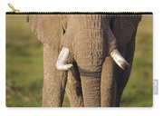 African Elephant Loxodonta Africana Carry-all Pouch by Gerry Ellis