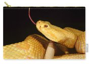 Albino Brazilian Rattlesnake Carry-all Pouch