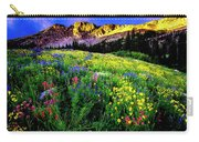 Albion Basin Carry-all Pouch