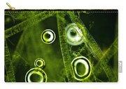 Algae Spirogyra Sp., Lm Carry-all Pouch