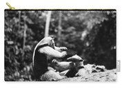 Amazon: Anteater Carry-all Pouch