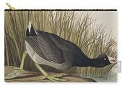 American Coot Carry-all Pouch
