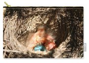 American Robin Nestlings Carry-all Pouch