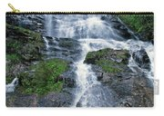 amicalola falls Ga Carry-all Pouch