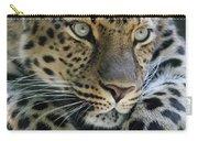 Amur Leopard #2 Carry-all Pouch
