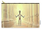 Ancient Alien Angel Carry-all Pouch