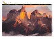 Andes Mountains Carry-all Pouch