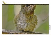 Anna's Perched Carry-all Pouch