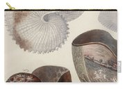 Aquatic Animals - Sea - Shells - Composition - Alien - Wall Art  - Interior Decoration  Carry-all Pouch