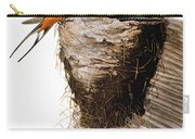 Audubon: Swallow Carry-all Pouch