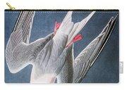 Audubon: Tern Carry-all Pouch