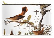 Audubon: Wren Carry-all Pouch