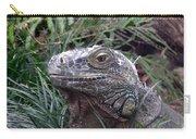 Australia - Kamodo Dragon Carry-all Pouch