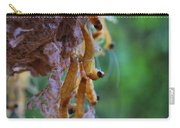 Baby Praying Mantises Carry-all Pouch