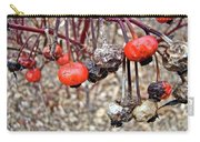 Beach Rose Hips - Rosa Rugosa Carry-all Pouch
