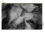 Bellevue Botanical Garden Leaves 6395 Carry-all Pouch
