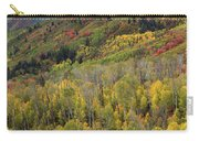 Big Cottonwood Canyon Fall Colors Carry-all Pouch