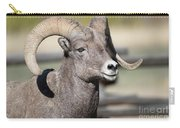 Bighorn Ram Carry-all Pouch