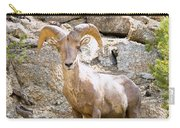 Bighorn Sheep In The San Isabel National Forest Carry-all Pouch