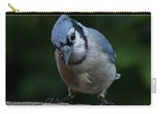 Birds From Heaven - Bluejay Carry-all Pouch