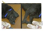 Black Lab - Gently Cross Your Eyes And Focus On The Middle Image Carry-all Pouch