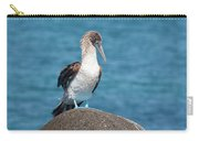 Blue-footed Booby On Rock Carry-all Pouch