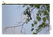 Blue Jay In Tree Carry-all Pouch