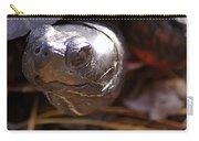Bog Turtle Carry-all Pouch